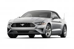 Ford Mustang or Similar